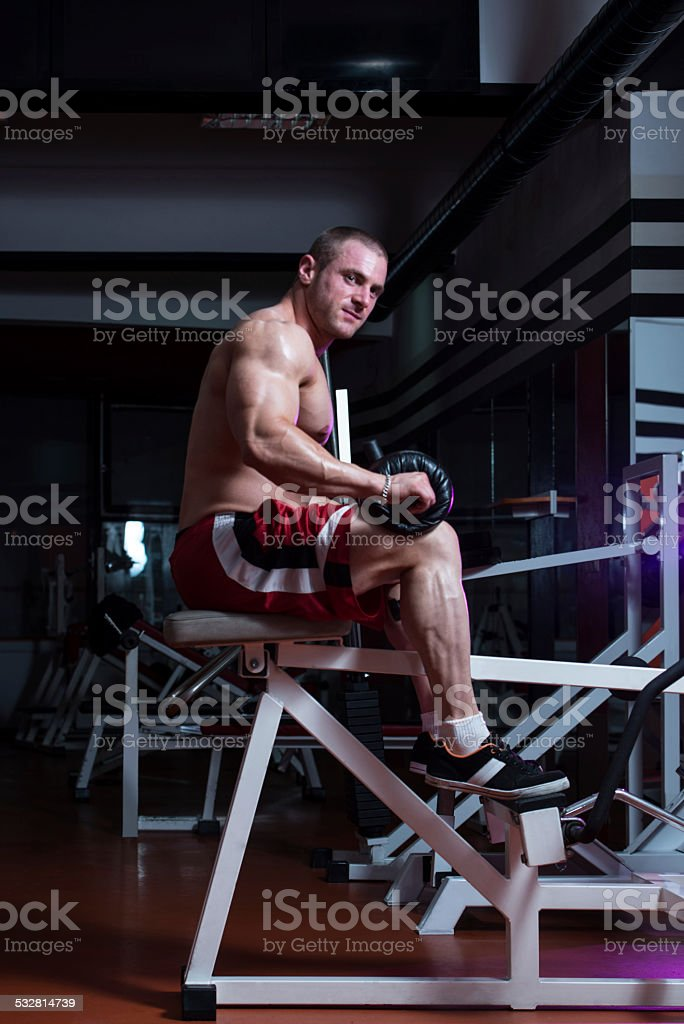 Sporty Legs Calf stock photo