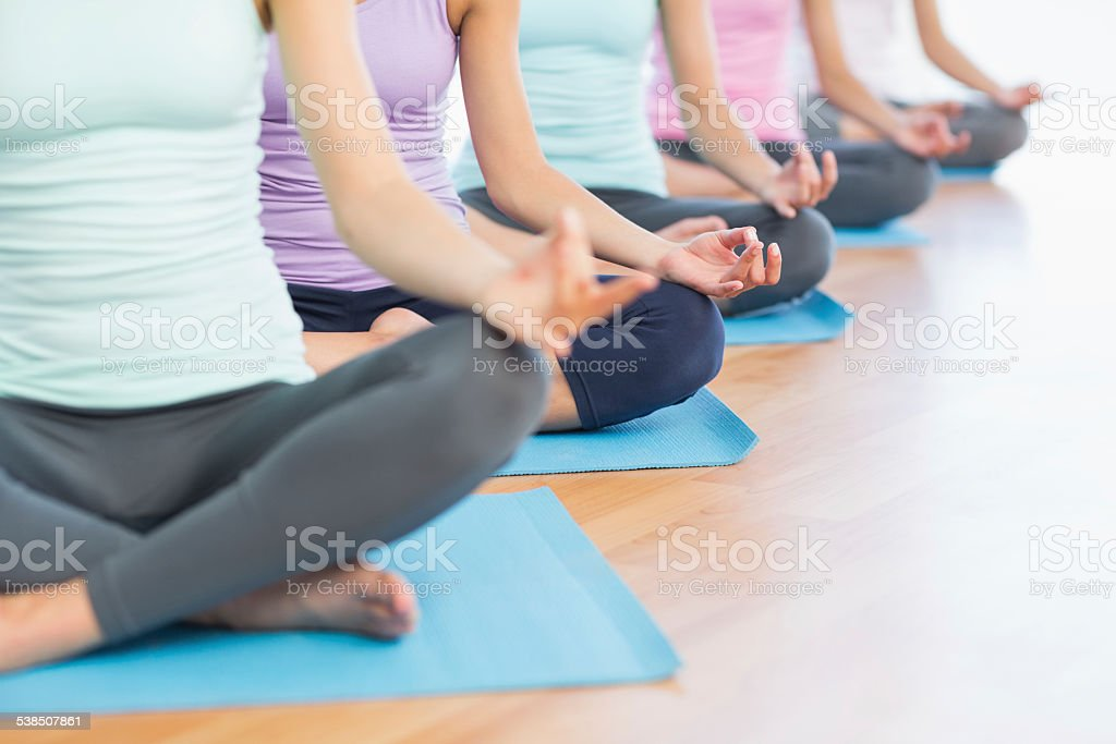 Sporty women in lotus pose at fitness studio stock photo