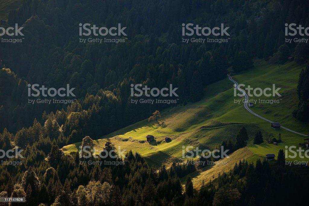 spot light on a alpine alm meadow in trio, austria stock photo
