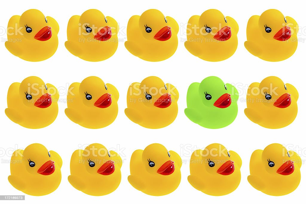 Spot the Green Duckie royalty-free stock photo
