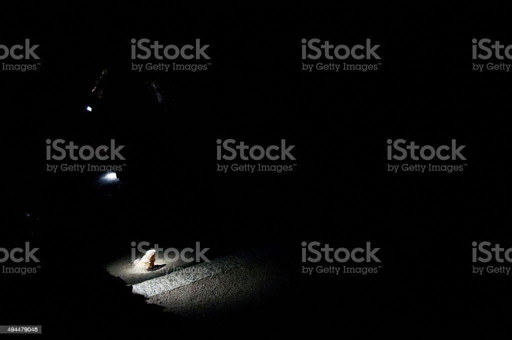 spotlight on stalacmite limestone stock photo