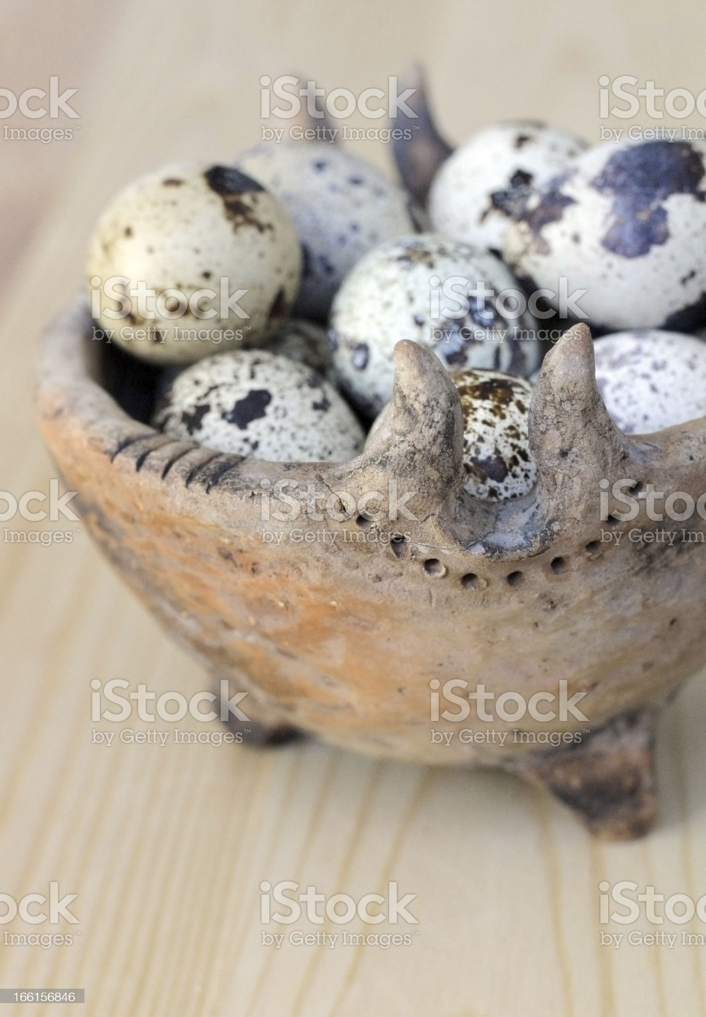 Spotted Eggs. royalty-free stock photo