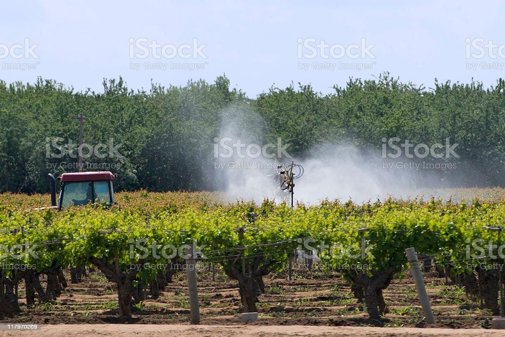 spraying vineyard stock photo