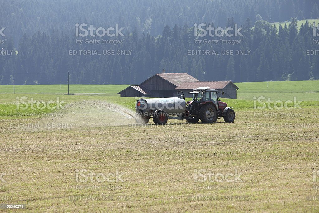 Spreading fertilizer stock photo