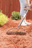 spreading the new mulch