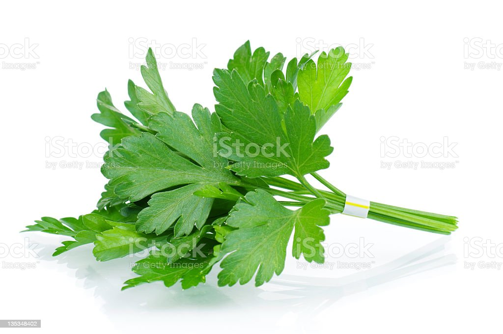 A sprig of fresh parsley on a white background stock photo