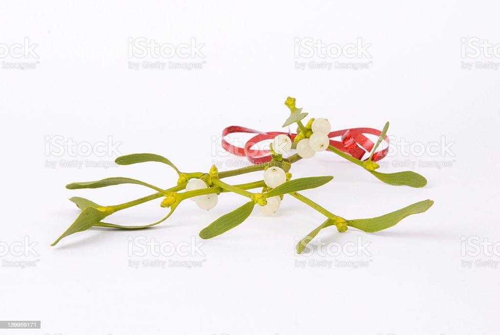 Sprig of Mistletoe royalty-free stock photo