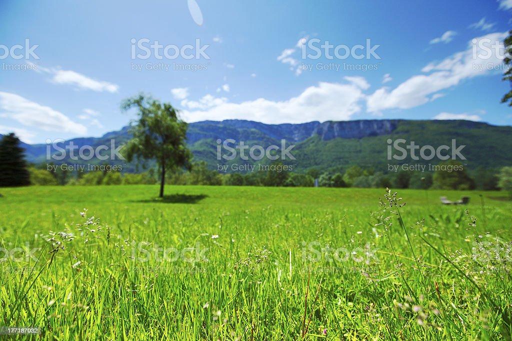 spring alps royalty-free stock photo