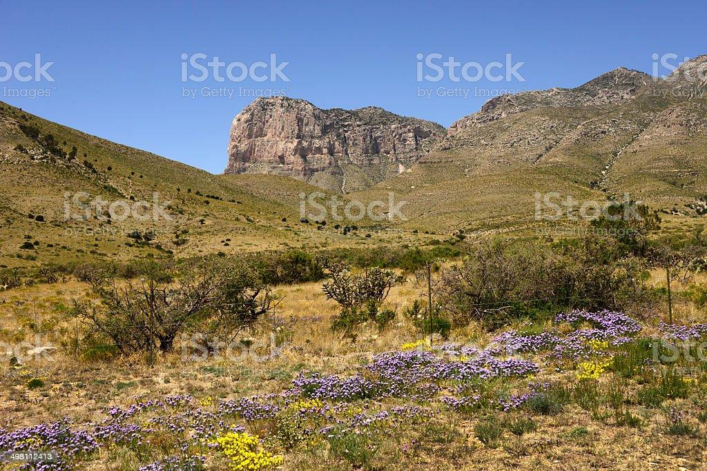 Spring at El Capitan, West Texas stock photo