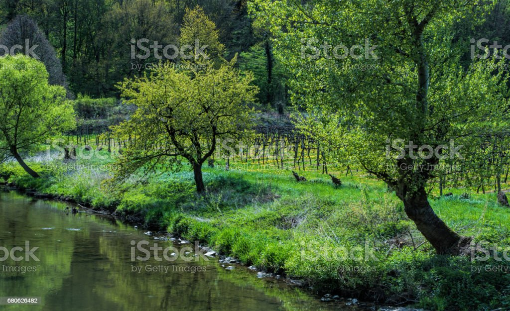 Spring at the ahr stock photo
