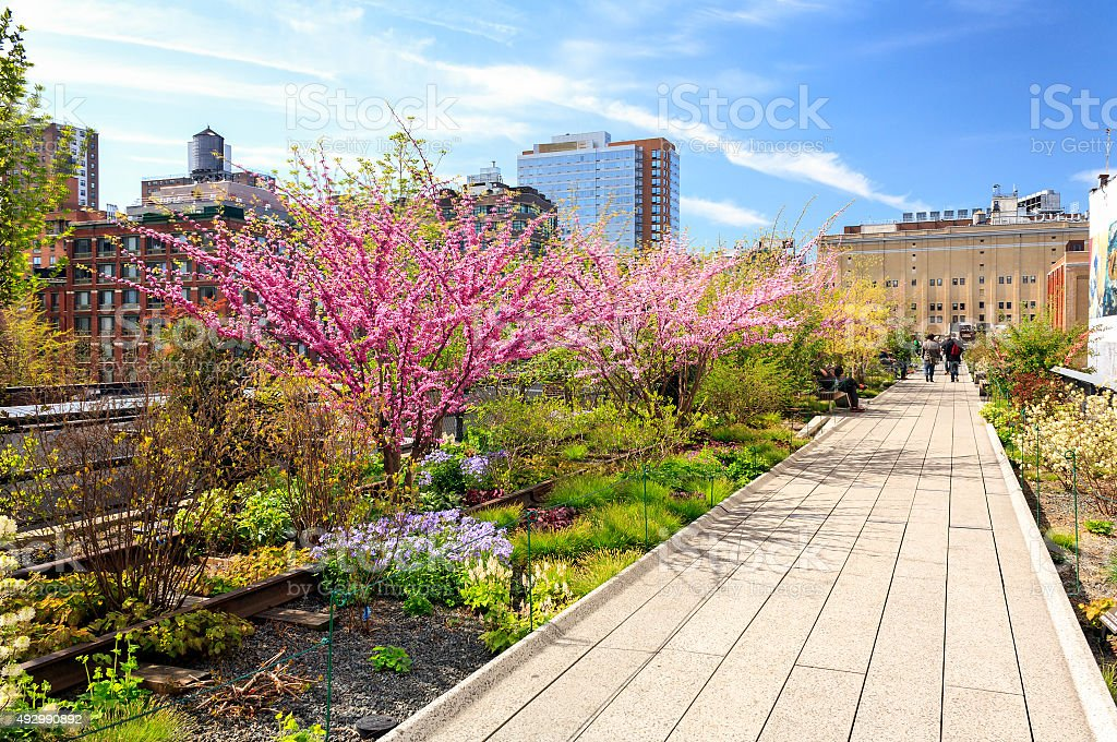 Spring at the High Line in New York City stock photo