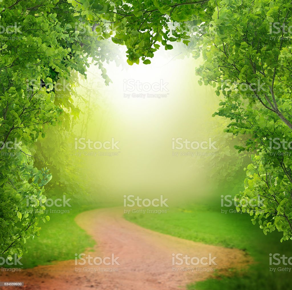 spring background with wooden table stock photo