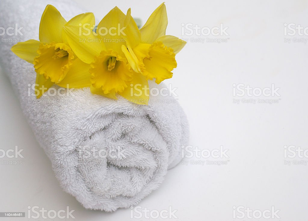 Spring Bathroom royalty-free stock photo