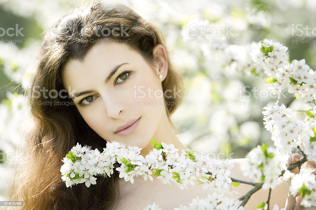 spring beauty royalty-free stock photo