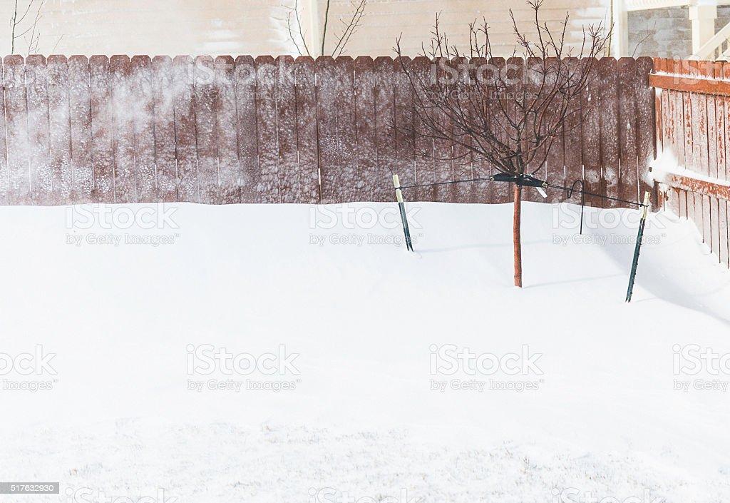 Spring blizzard back yard view. Colorado, USA stock photo