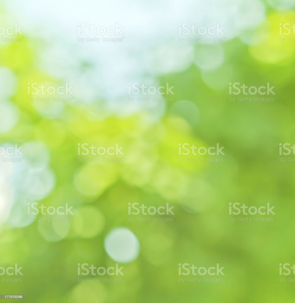 spring blurred background in green and blue colors royalty-free stock photo