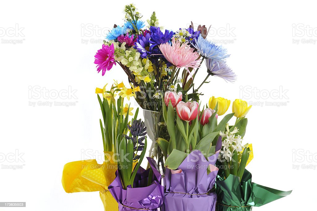 Spring bouquet and potted flowers stock photo 173835503 istock spring bouquet and potted flowers royalty free stock photo mightylinksfo