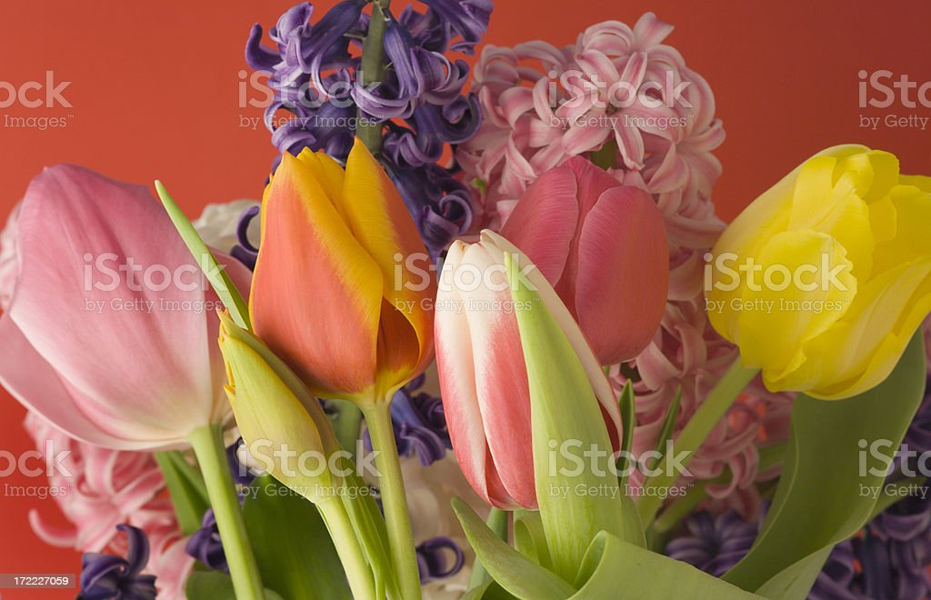 Spring Bouquet on Red royalty-free stock photo