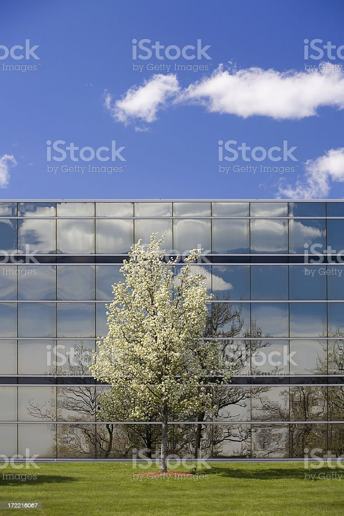 Spring Business royalty-free stock photo