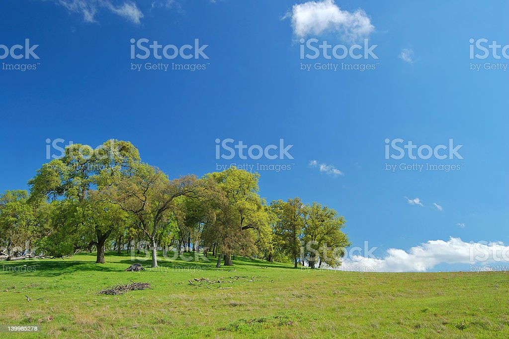 spring countryside royalty-free stock photo