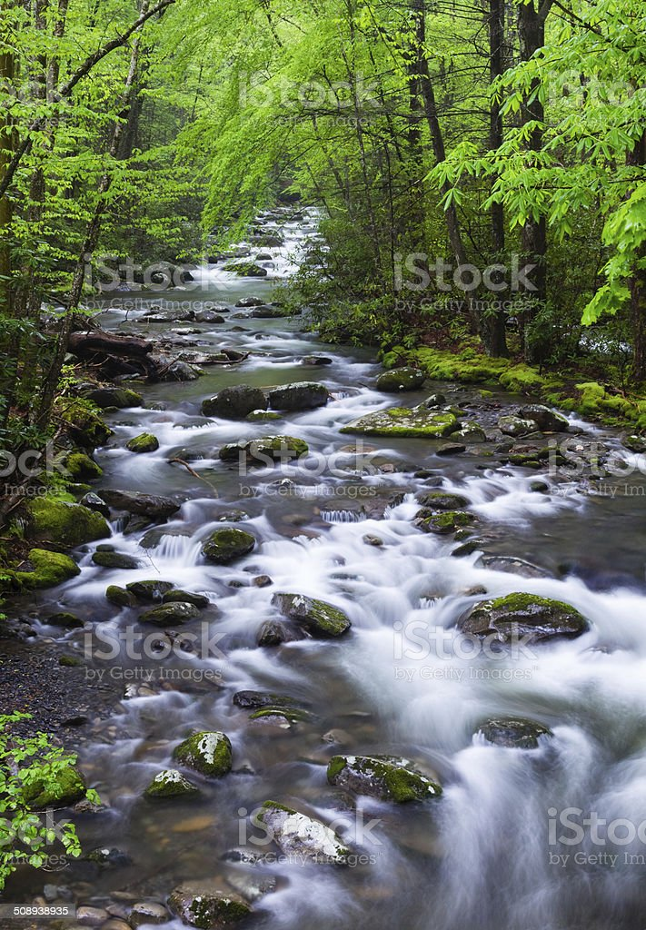 Spring Creek in the Smokies stock photo