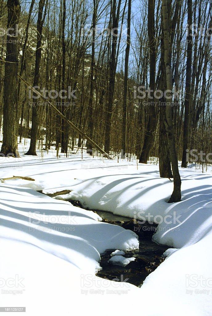 Spring Creek Showing royalty-free stock photo