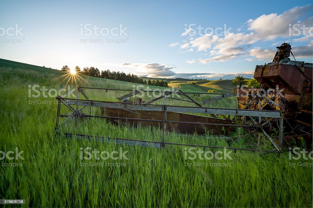 Spring crops with an old combine and morning sun star stock photo