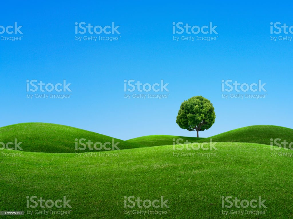 Spring Day stock photo