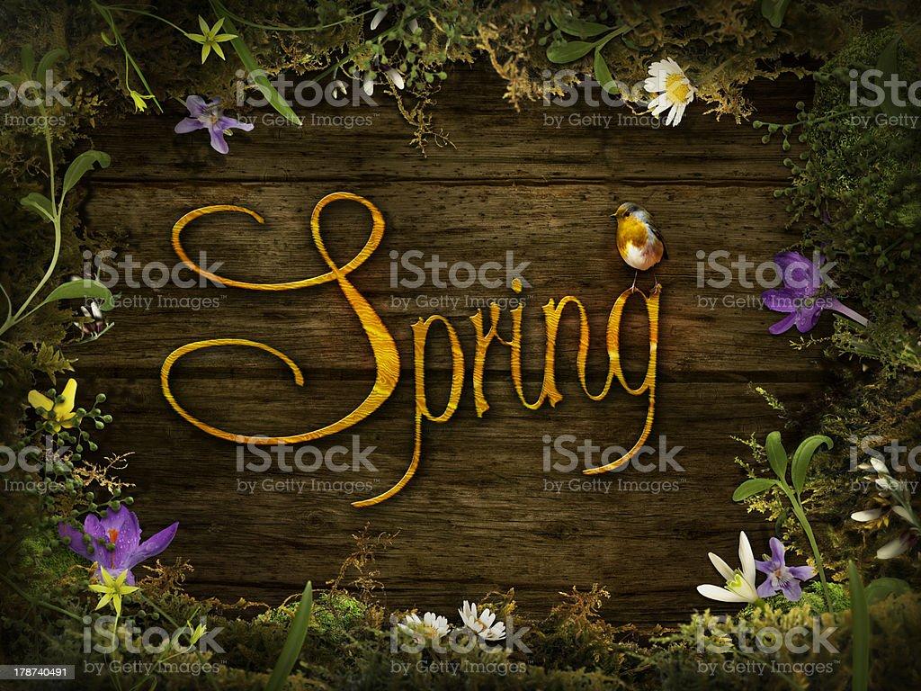 Spring design - Flower wreath royalty-free stock photo