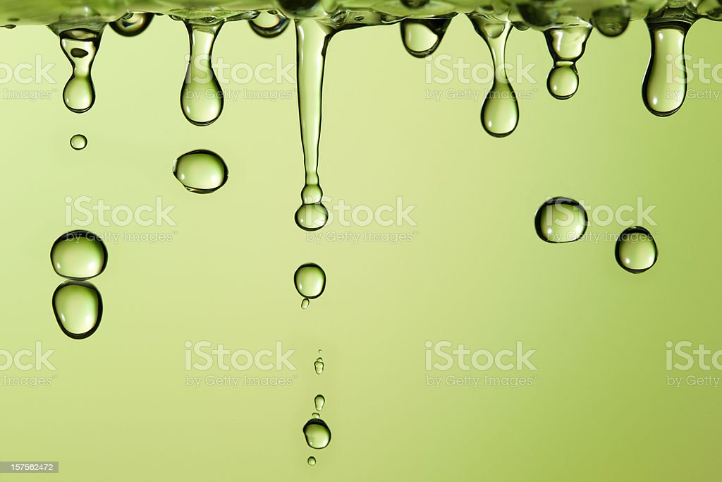 Spring drops royalty-free stock photo