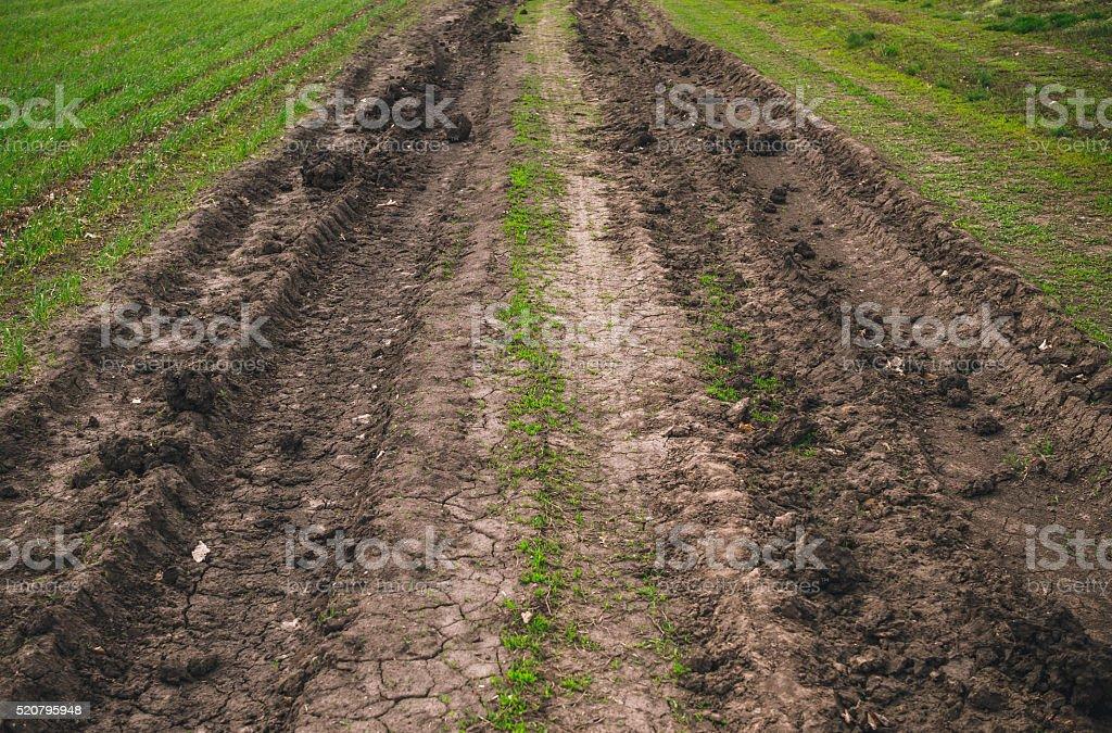Spring farm road stock photo