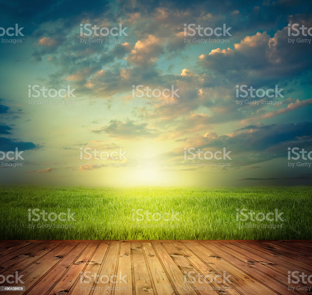Spring field and wood floor stock photo
