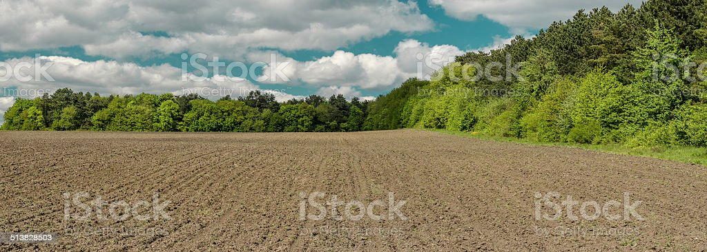 Spring field before sowing stock photo