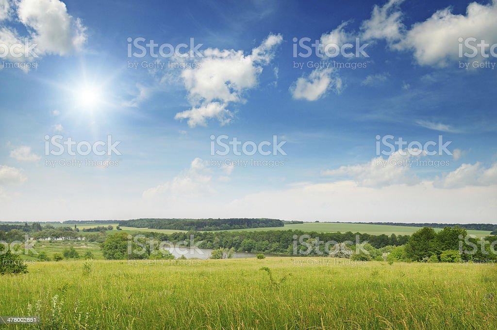 spring field stock photo