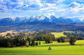 Spring fields below the Tatra Mountains - Landscape