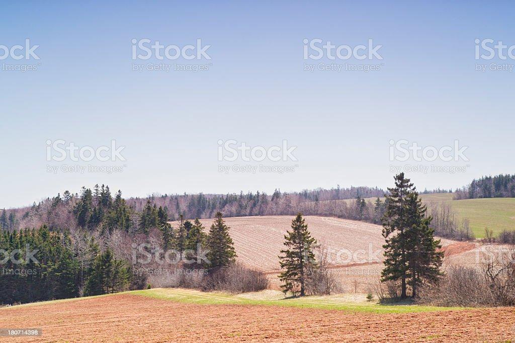 Spring fields, Prince Edward Island. stock photo