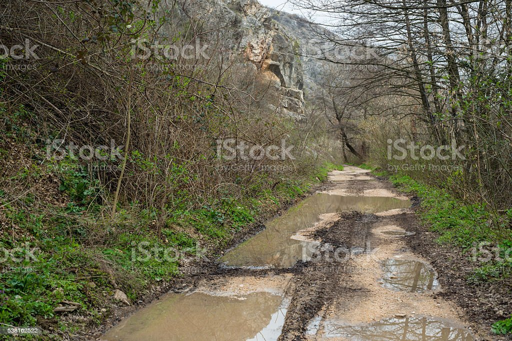 Spring flooding. Natural disaster stock photo