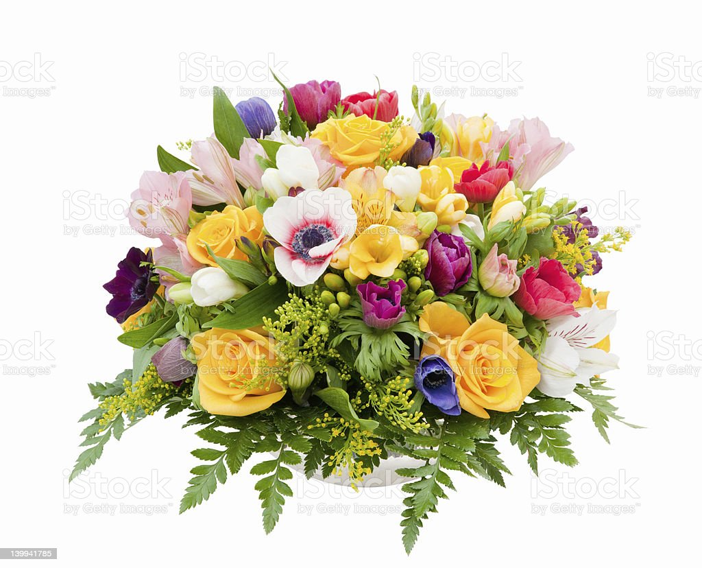 Spring flower assortment stock photo