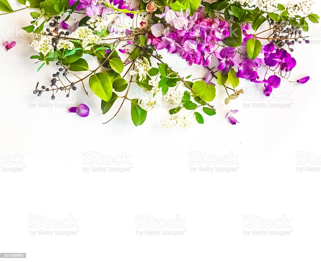 Spring Flower Background stock photo