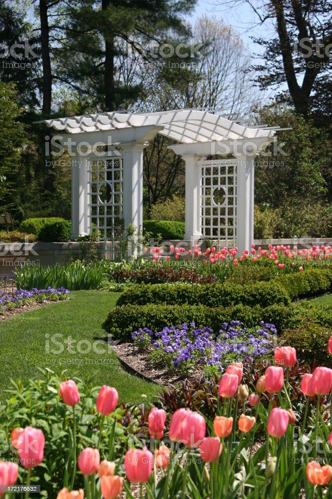 Spring Flower Garden royalty-free stock photo
