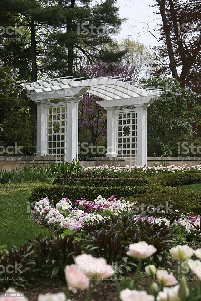 Spring Flower Garden royalty-free stock photo