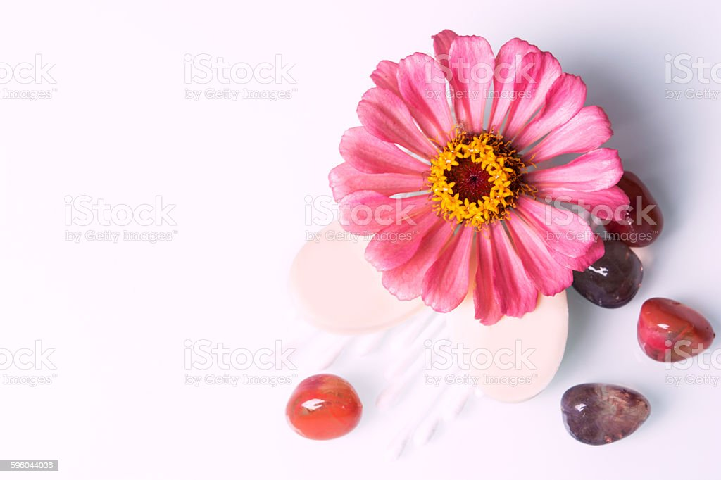 spring flower with soap on the table stock photo