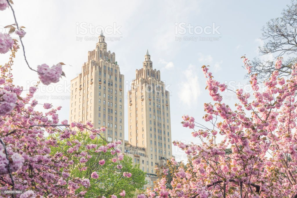Spring Flowers and Landmark Art Deco Architecture in NYC stock photo