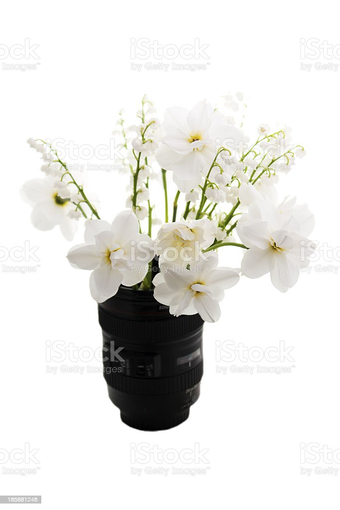 spring flowers are in vase on a white background royalty-free stock photo