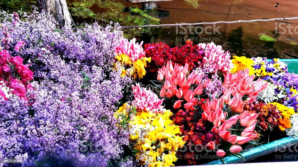 Spring flowers for sale stock photo