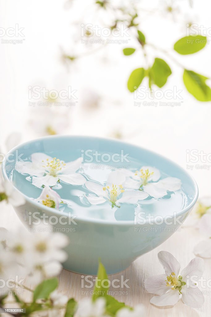 spring flowers for spa and aromatherapy royalty-free stock photo