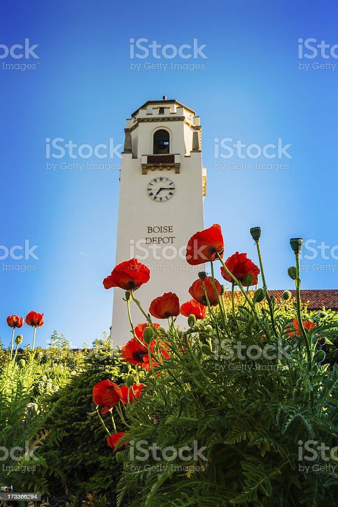 Spring flowers in foreground in Boise Depot stock photo