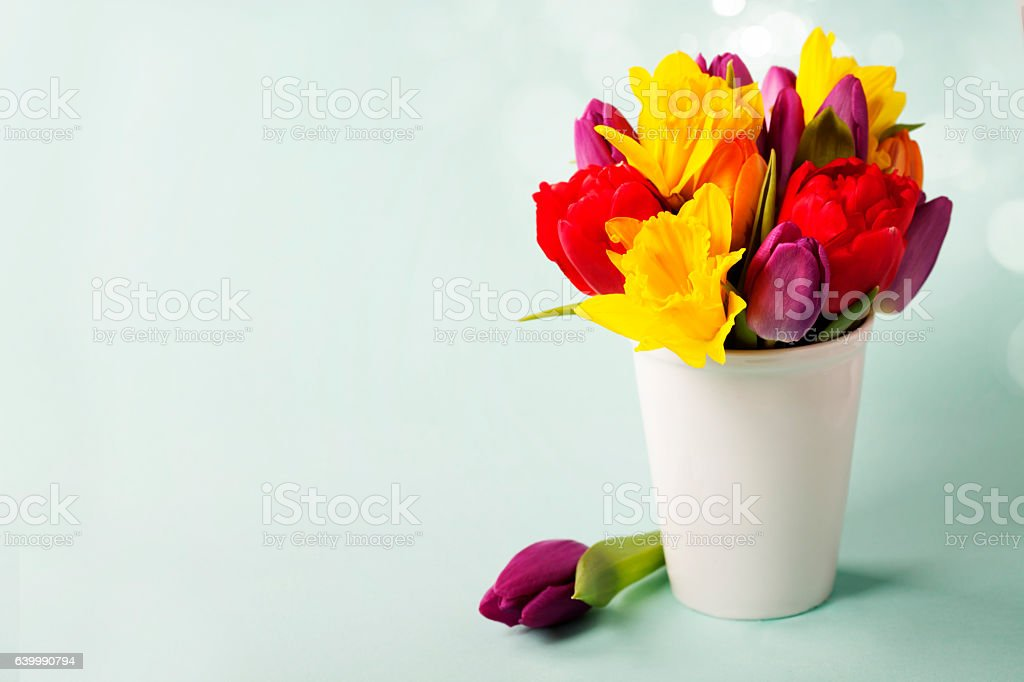 Spring flowers on blue background stock photo
