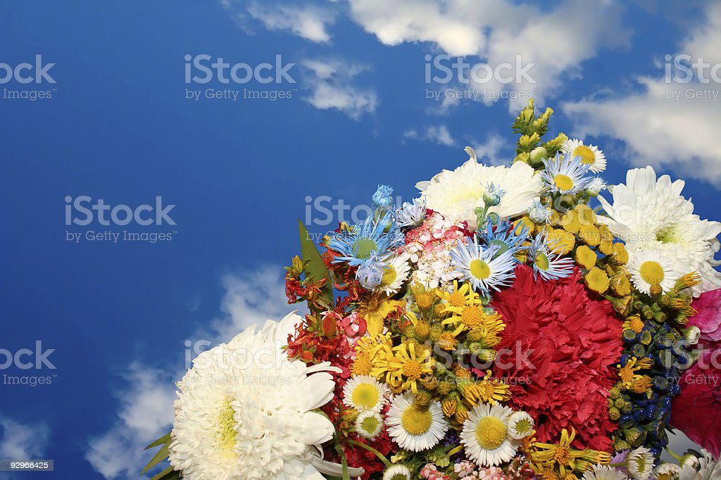Spring flowers on blue sky background royalty-free stock photo