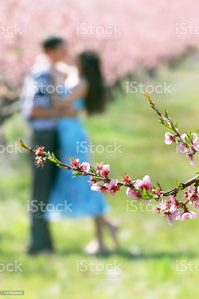 spring flowers on loving couple background royalty-free stock photo